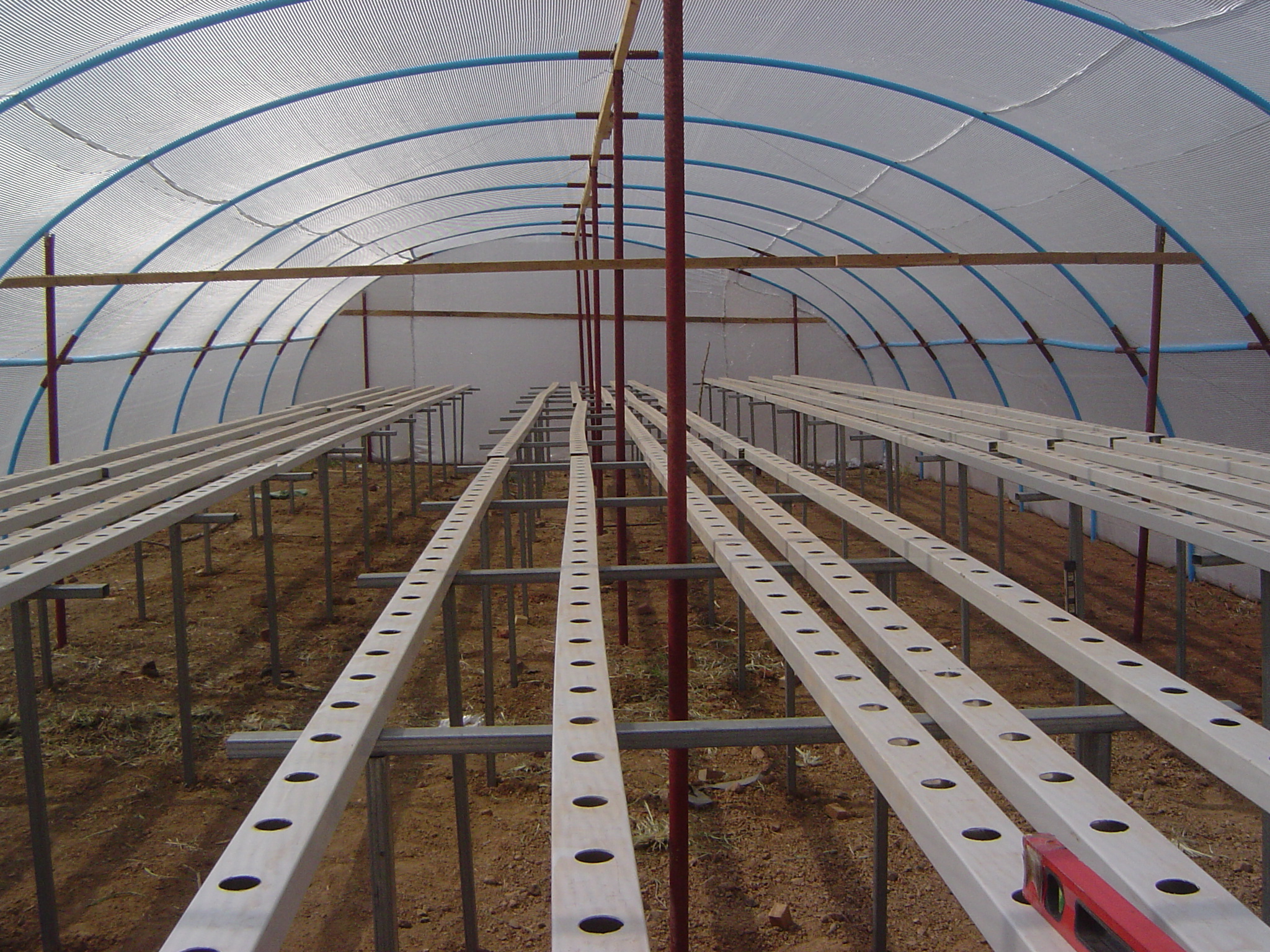 NFT Hydroponic System in a High Tunnel