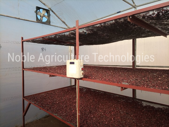 Automated Greenhouse Dryer