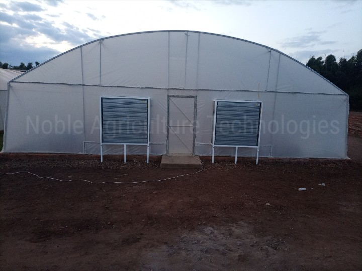 Noble Greenhouse Fitted with Evaporative Cooling system
