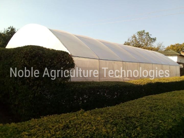 Noble Greenhouse